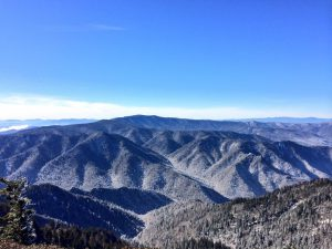 Mt LeConte view